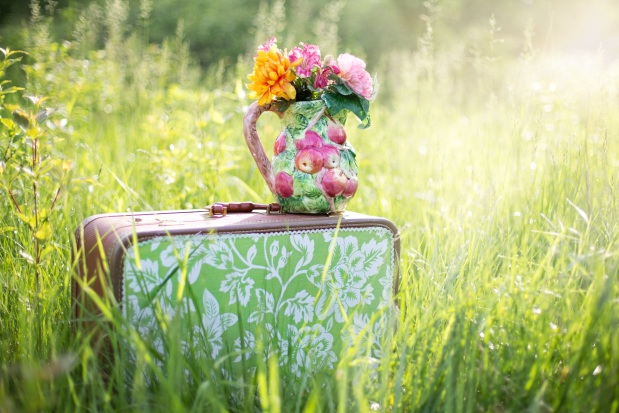 summer-still-life-suitcase-in-field-grass-summer.jpg